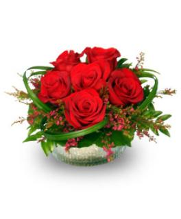 Rosy Red Posy